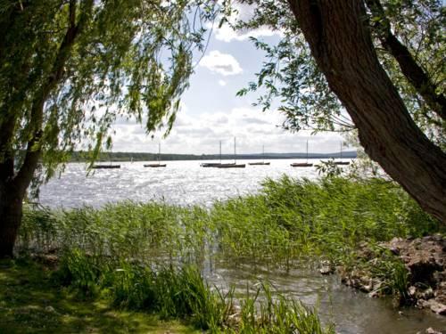 Blick von einem Spazierweg aus auf das Steinhuder Meer. Links und rechts stehen Bäume, deren Krone ein Sichtfenster auf das Gewässer freigeben. Auf dem Wasser ankern Segelboote.