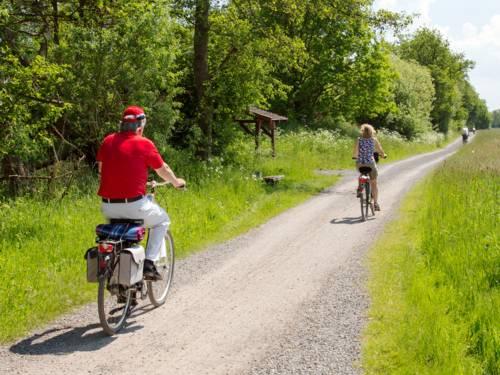 Mehrere Leute fahren mit Fahrrädern auf einem Radweg in einer Wiesenlandschaft.