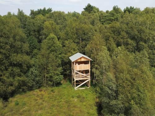 Moorlandschaft mit Birken in der ein hölzerner Aussichtsturm steht