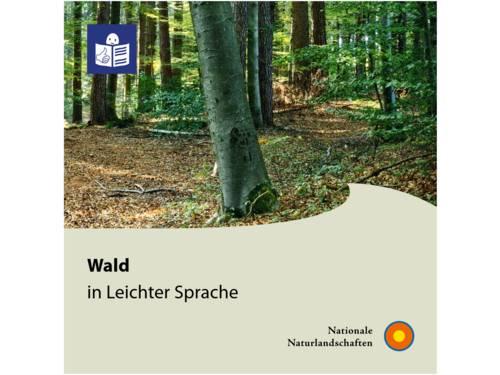 """Vorschau auf das PDF """"Wald in Leichter Sprache"""""""