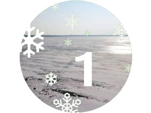 Eine verschneite Eisschicht liegt auf dem Steinhuder Meer.
