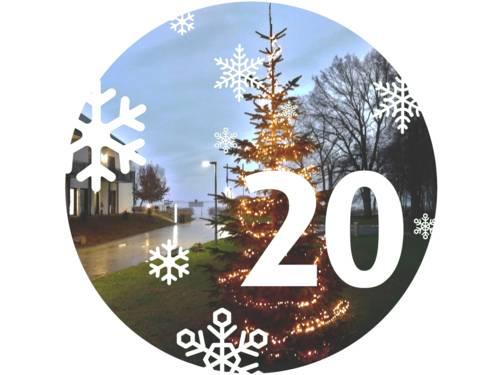 Ein geschmückter Weihnachtsbaum steht an einer Straße.