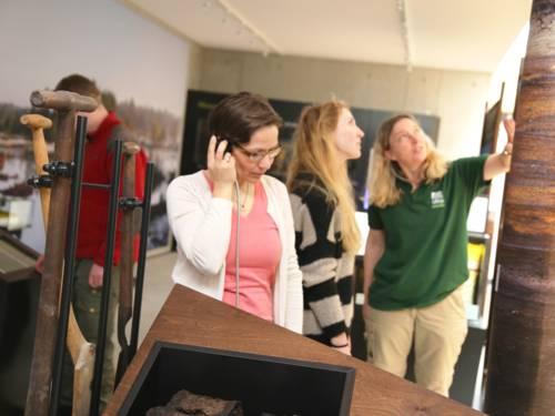 Drei Frauen und ein Mann schauen sich die Ausstellung im Naturparkhaus am Steinhuder Meer an.