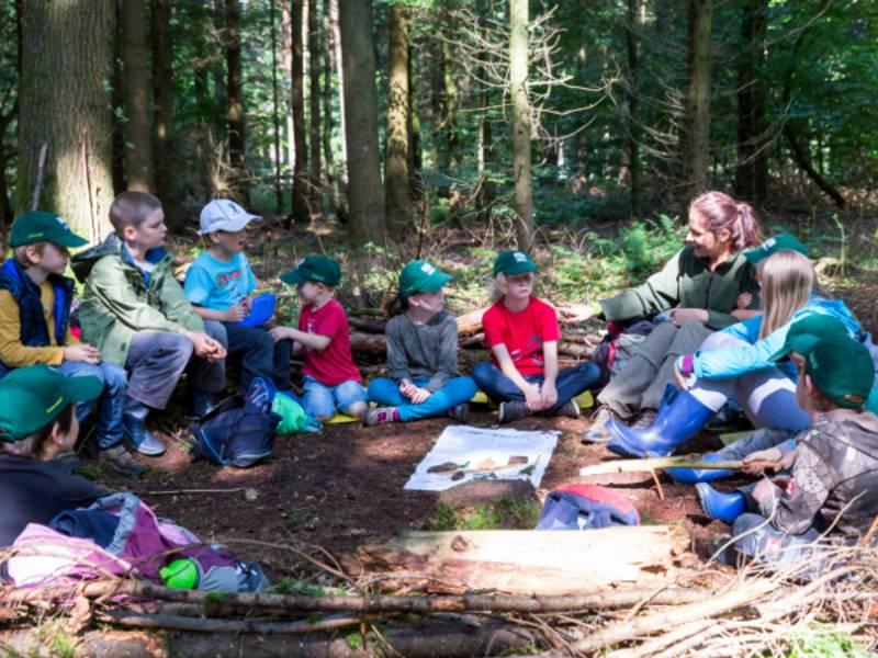 Kinder und eine Erwachsene sitzen in einem Halbkreis zusammen auf dem Waldboden.
