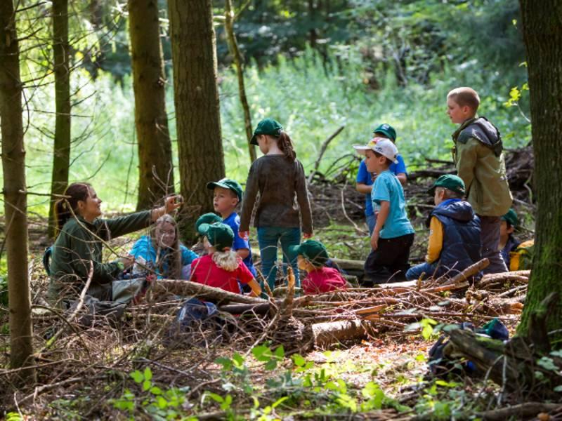 Eine Frau sitzt zwischen Bäumen auf dem Waldboden und hält etwas in die Luft, drum herum sind Kinder, die sich das Gezeigte anschauen.