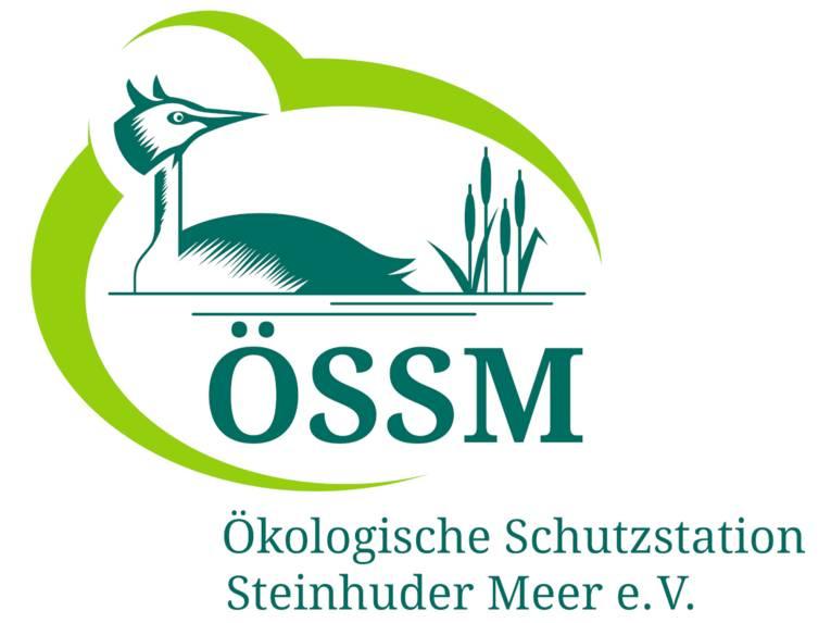 """Logo: Ein Wasservogel und Uferpflanzen sind von einer elliptischen Form fast ganz umschlossen, dazu die Buchstaben: """"ÖSSM"""" und darunter: """"Ökologische Schutzstation Steinhuder Meer e.V. """". Als Farbe kommen ein hellerer und ein dunklerer Grünton zum Einsatz."""