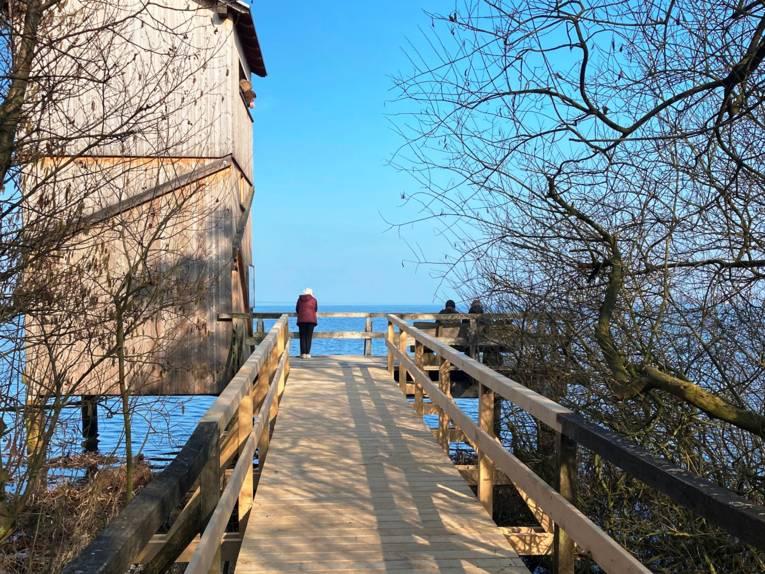 Ein Steg führt zu einem Aussichtsturm. Menschen blicken auf das Steinhuder Meer.