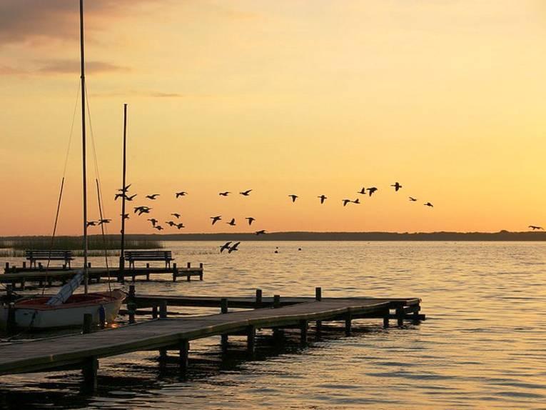 Ein Steg führt ins Steinhuder Meer, daran sind Boote festgemacht. Der Himmel ist durch die untergehende Sonne in feuriges Licht getaucht, ein Vogelschwarm fliegt durch diese maritime Kulisse.