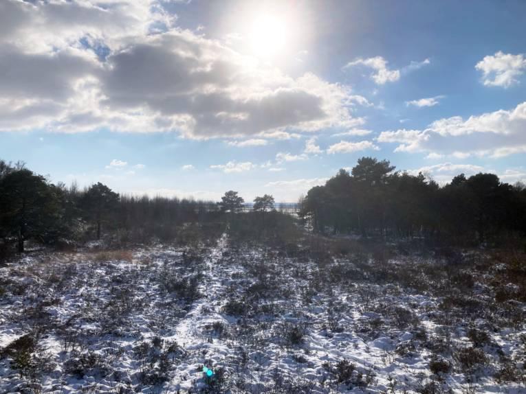 Die Landschaft wirkt vom Schnee wie mit Zucker bestäupt.