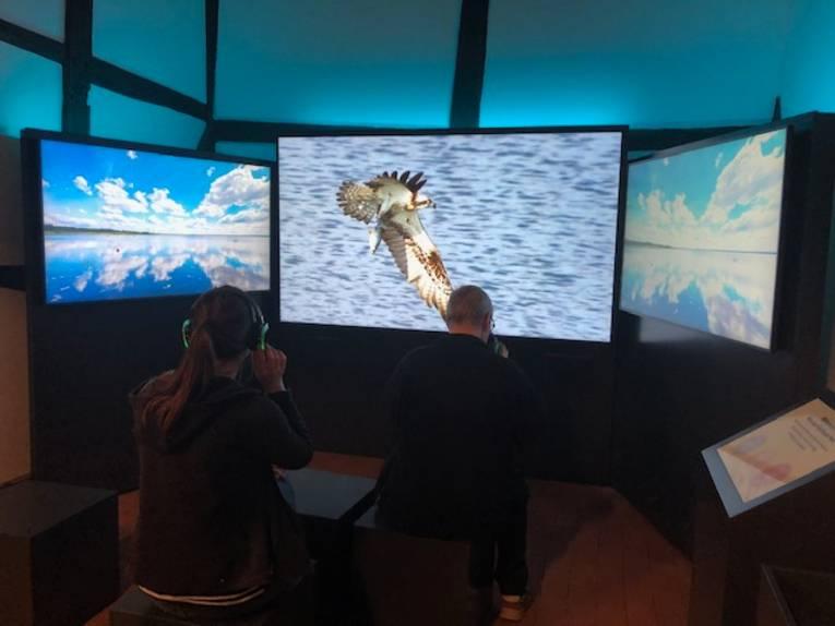 Eine Besucherin und ein Besucher nutzen das Diorama in der Infoscheune Steinhude.