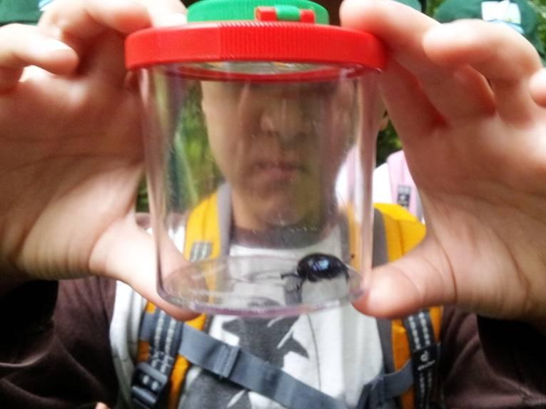 Ein Junge schaut in einen Plastikbecher, im Deckel ist eine Lupe eingebaut. Auf dem Boden des durchsichtigen Bechers krabbelt ein schwarzer Käfer.