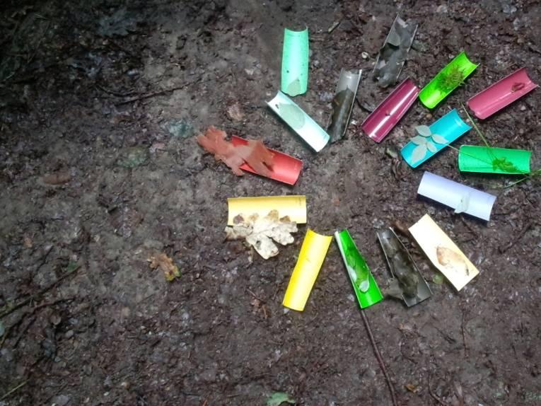 Plastikteile unterschiedlicher Farbe bilden einen Kreis, darauf sind jeweils Naturmaterialien abgelegt, die dieselbe Farbe wir das Plastickstück haben.