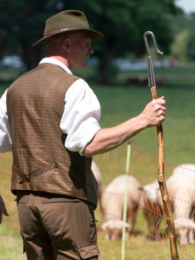 Ein Schäfer steht bei seinen eingezäunten Schafen.