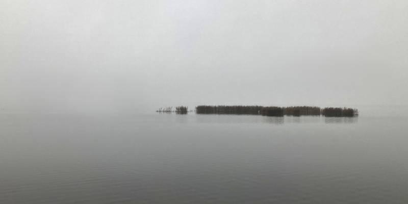 Dichter Nebel hängt über dem Steinhuder Meer, Holzpfosten und eine kleine Insel spiegeln sich im Wasser.